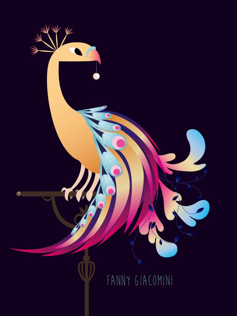 Projet édito – Oiseau sur Illustrator