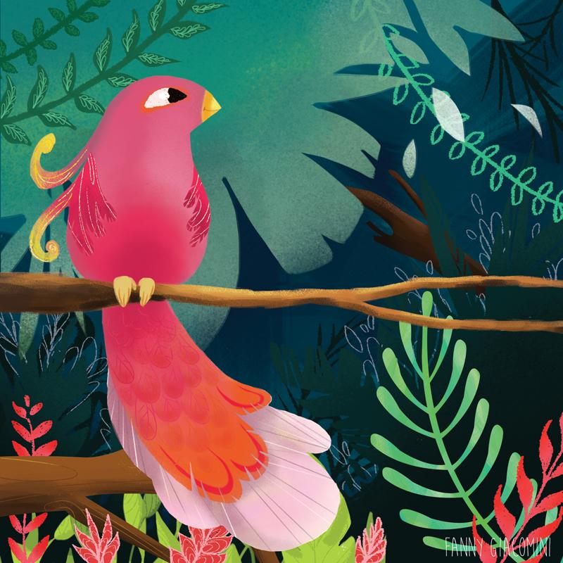 Concours Bologne 2014 – Petit oiseau!